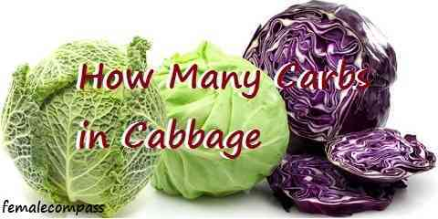 carbs in cabbage