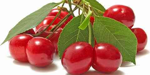 carbs in cherries